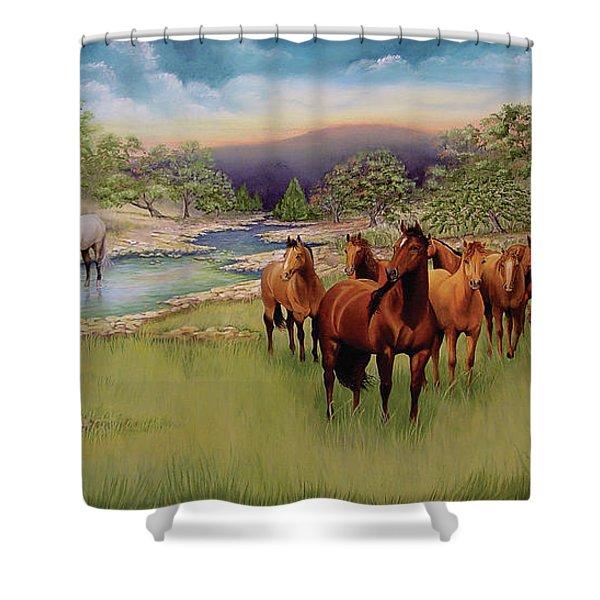 Salado Shower Curtain