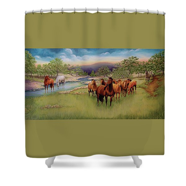 Salado Shower Curtain