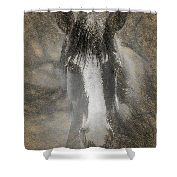 Salt River Stallion Shower Curtain