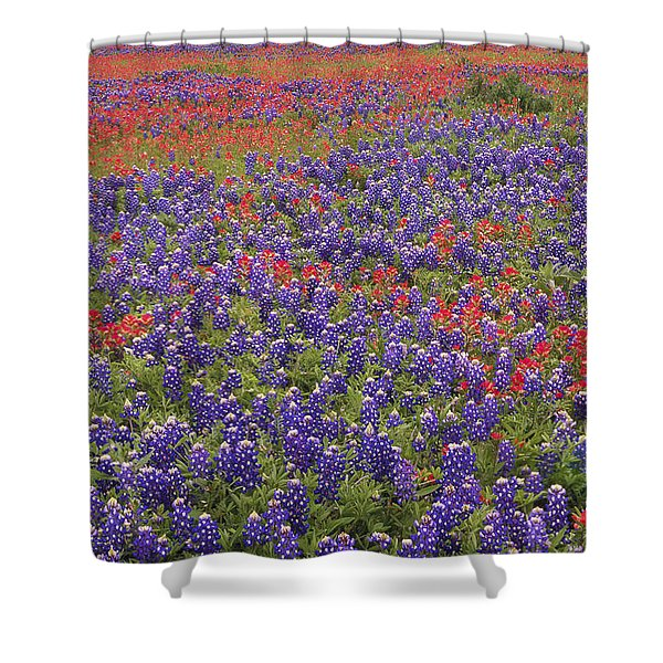 Sand Bluebonnet And Paintbrush Shower Curtain