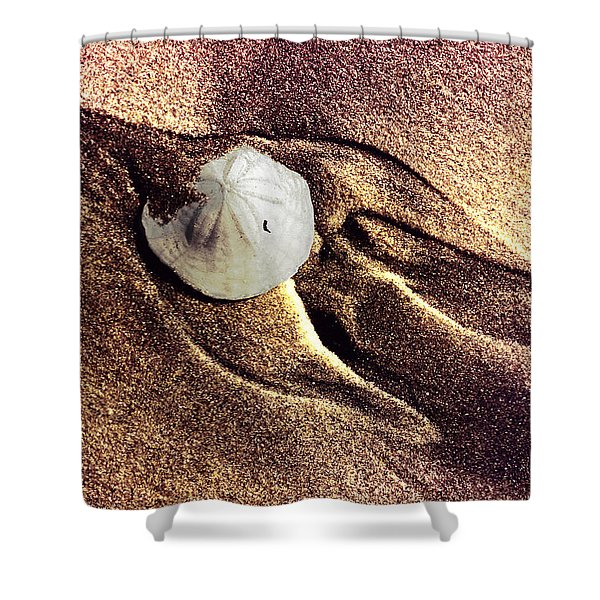 Sand Dollar Bird Shower Curtain