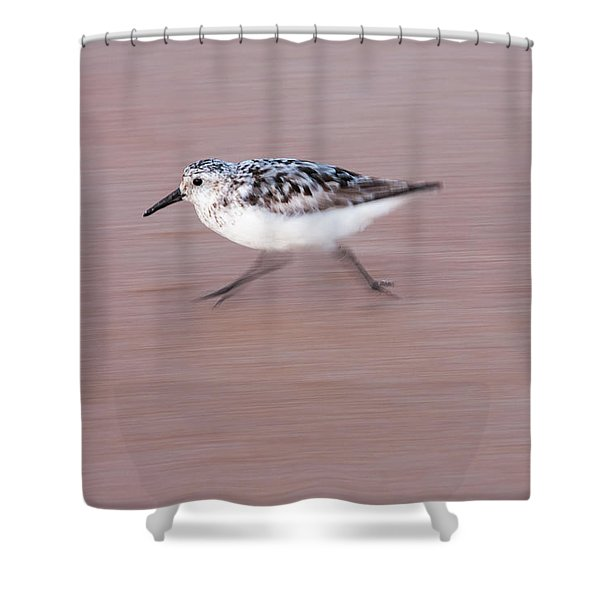 Sanderling On The Run Shower Curtain