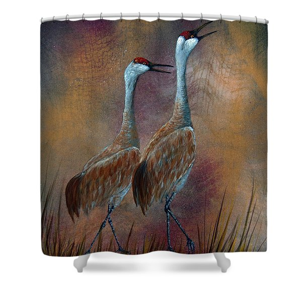 Sandhill Crane Duet Shower Curtain