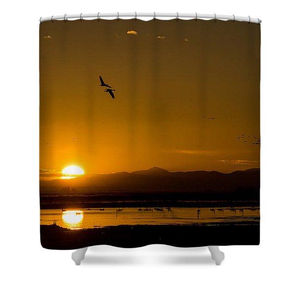 Sandhill Crane Sunrise Shower Curtain