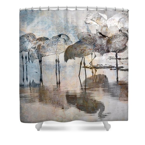 Sandhill Cranes At Dawn 1 Shower Curtain
