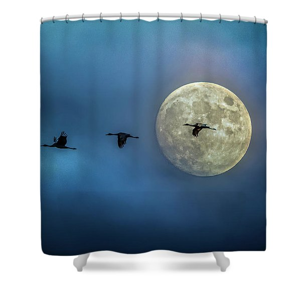 Sandhill Cranes With Full Moon Shower Curtain