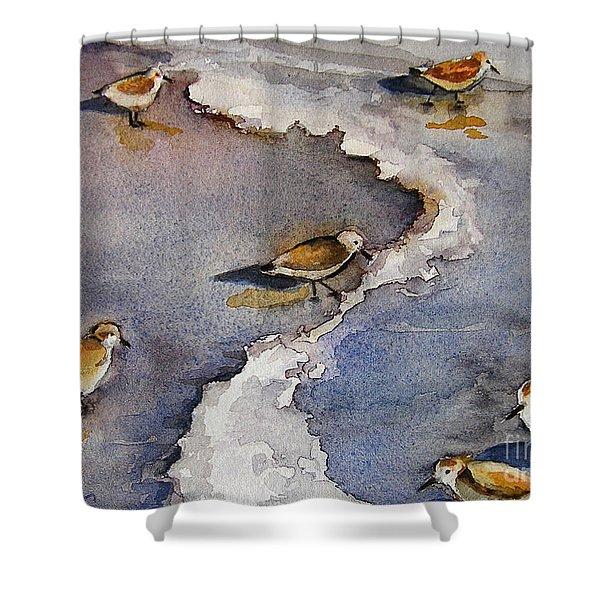 Sandpiper Seashore Shower Curtain