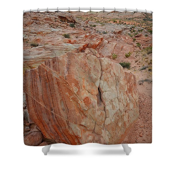 Sandstone Shield In Valley Of Fire Shower Curtain