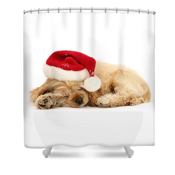 Santa's Sleepy Spaniel Shower Curtain