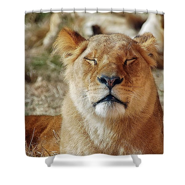 Savoring The Sun Shower Curtain