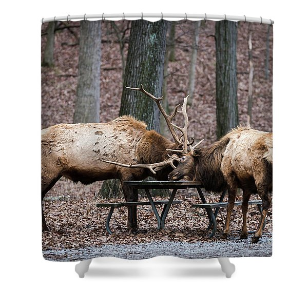 Say Uncle Shower Curtain