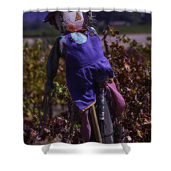Scarecrow With Floppy Hat Shower Curtain