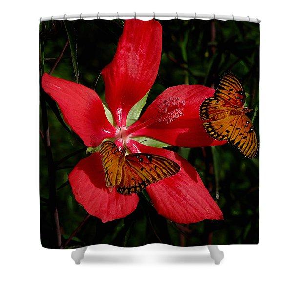 Scarlet Beauty Shower Curtain