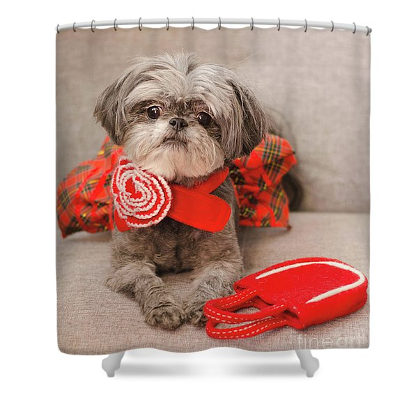 Scarlett And Red Purse Shower Curtain