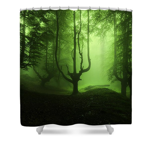 The Funeral Of Trees Shower Curtain