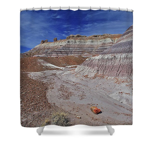 Scattered Fragments Shower Curtain