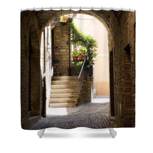 Scenic Archway Shower Curtain