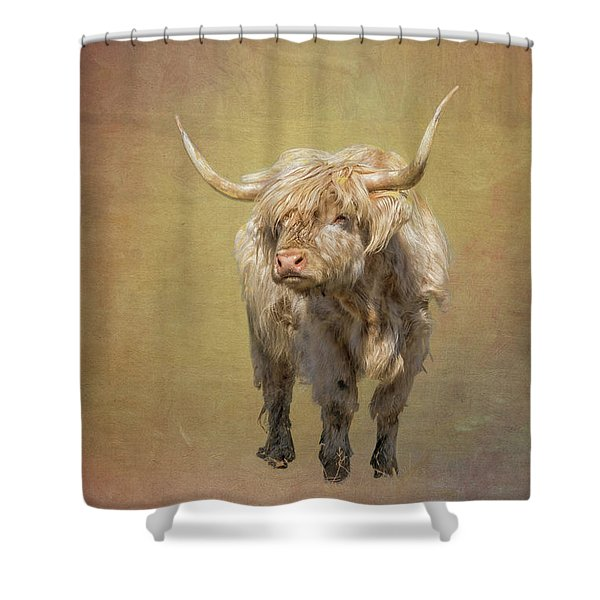 Shower Curtain featuring the photograph Scottish Highlander by Tom Singleton