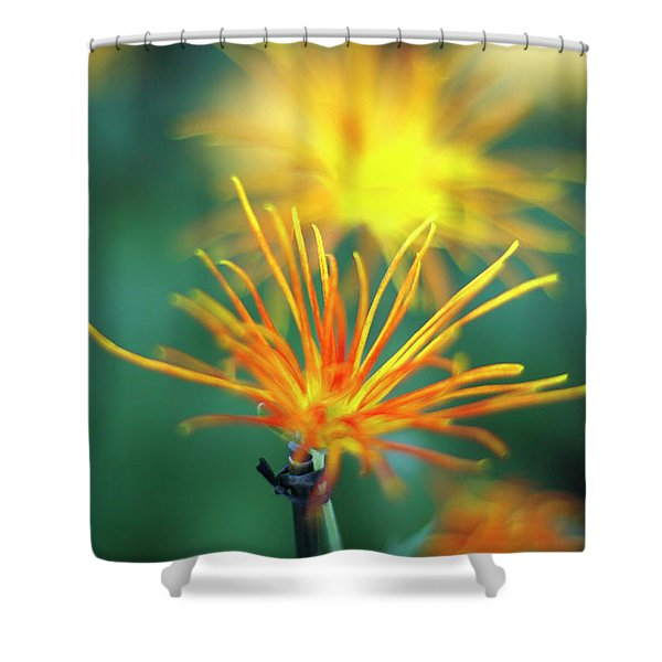 Scraggly Mum Shower Curtain
