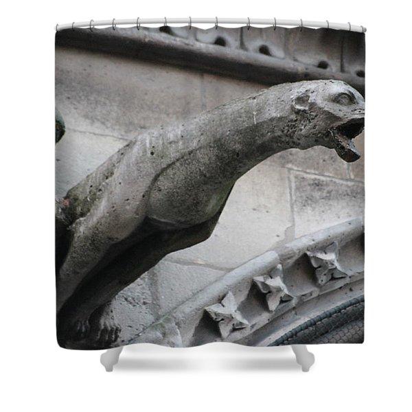 Screaming Griffon Notre Dame Paris Shower Curtain