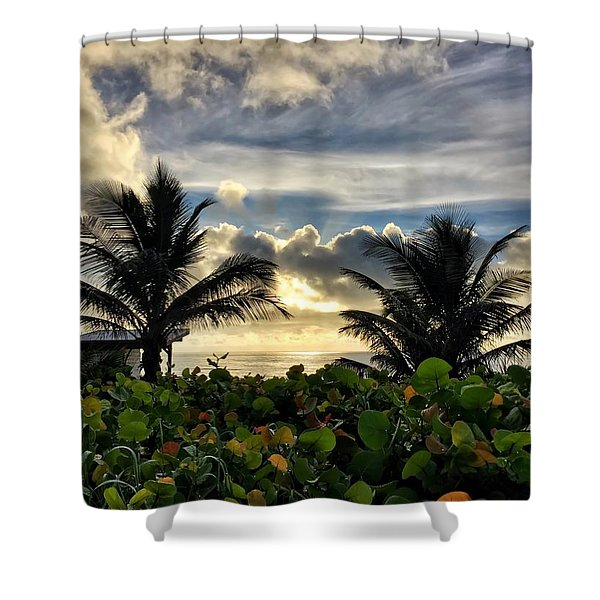 Sea Grapes And More Shower Curtain