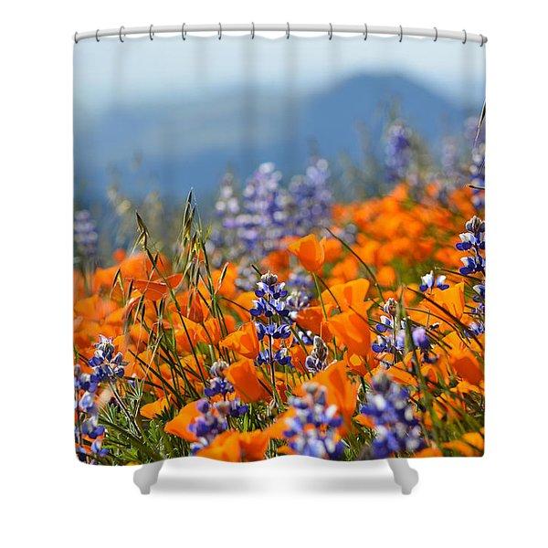 Sea Of California Wildflowers Shower Curtain