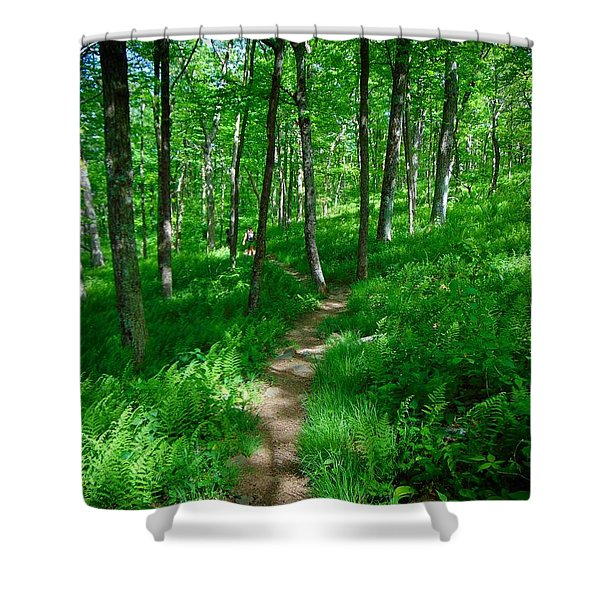 Sea Of Ferns Shower Curtain