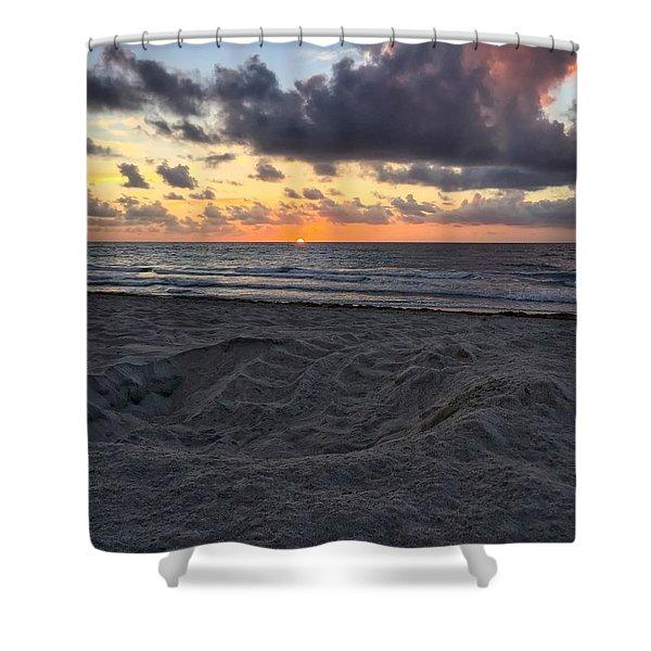 Sea Turtle Hatch Shower Curtain