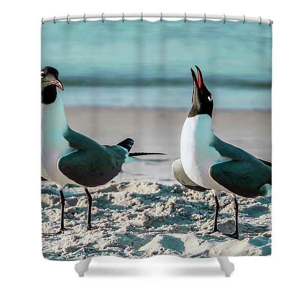 Seagull Serenade 4954 Shower Curtain