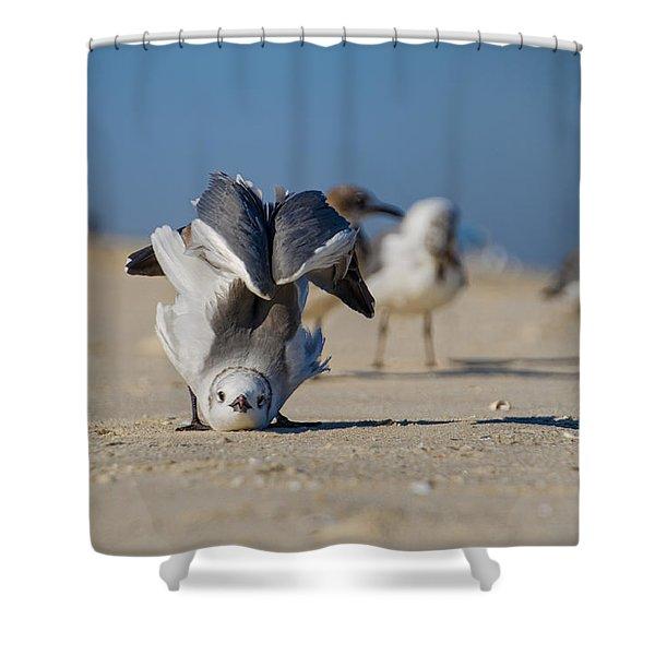 Seagull Yoga Shower Curtain