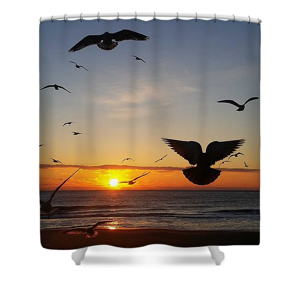 Seagulls At Sunrise Shower Curtain