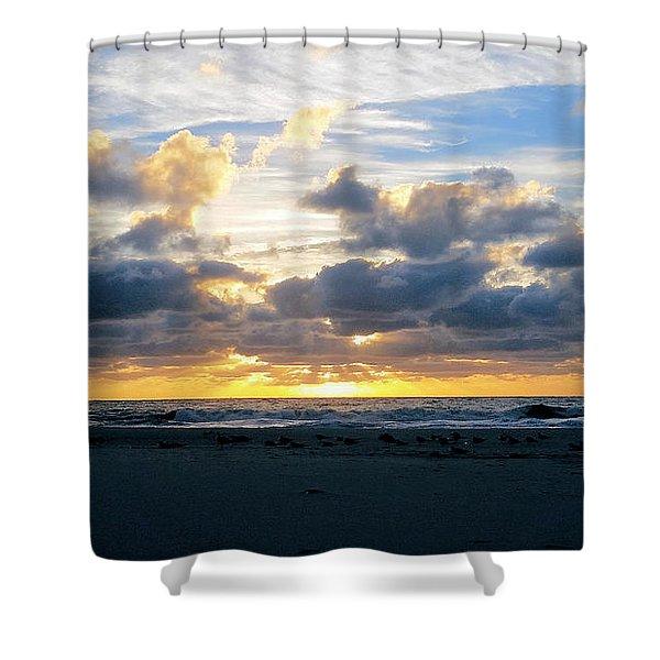 Seagulls On The Beach At Sunrise Shower Curtain