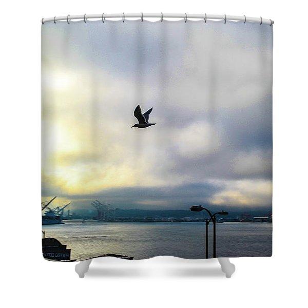 Seahawkin Shower Curtain