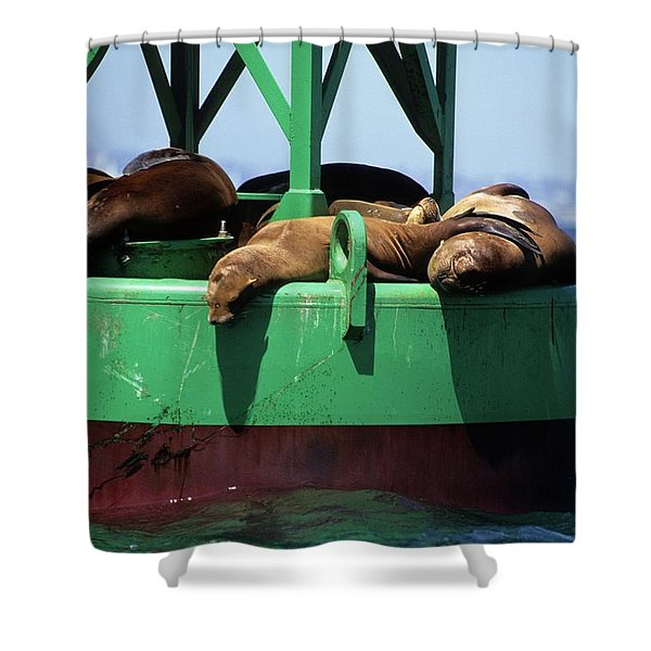 Seals On Channel Marker Shower Curtain