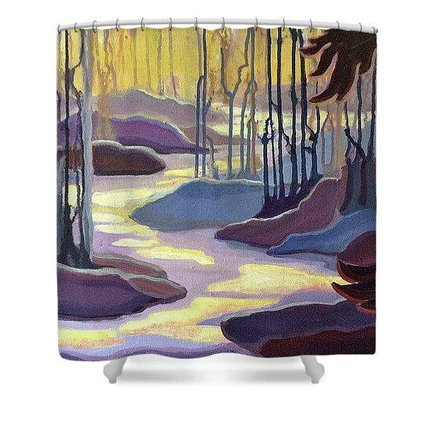 Searching Shower Curtain