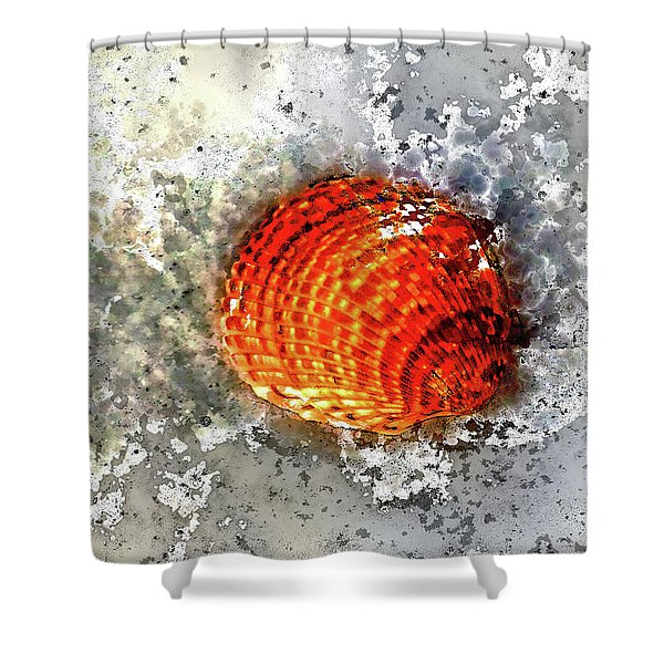 Seashell Art  Shower Curtain