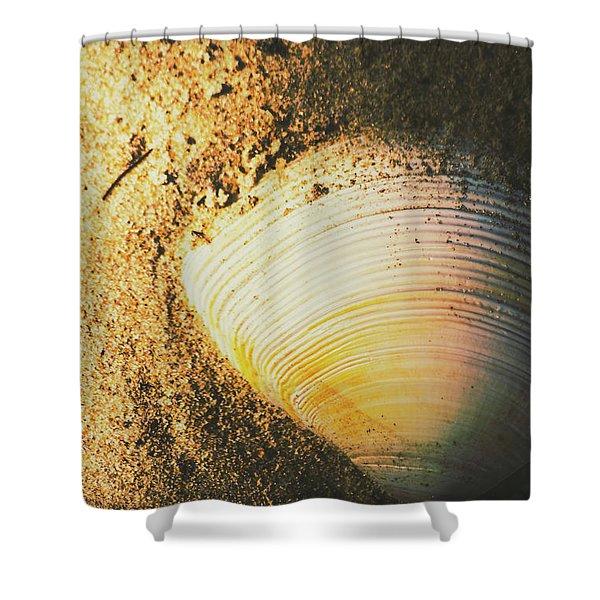Seashells And Beach Colours Shower Curtain