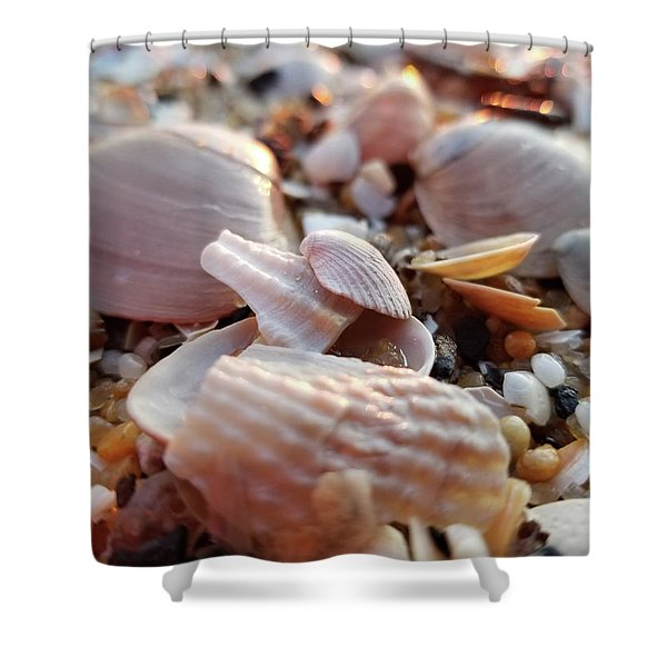 Seashells And Pebbles Shower Curtain