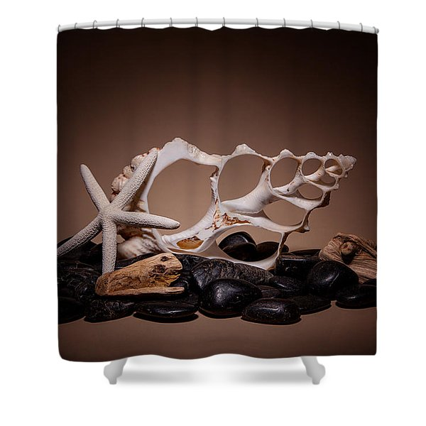 Seashells On The Rocks Shower Curtain