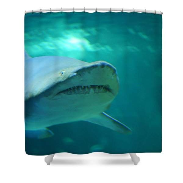 Season Eatings 1 Shower Curtain