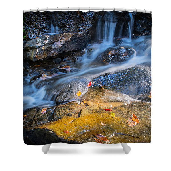 Seasons Collide Shower Curtain