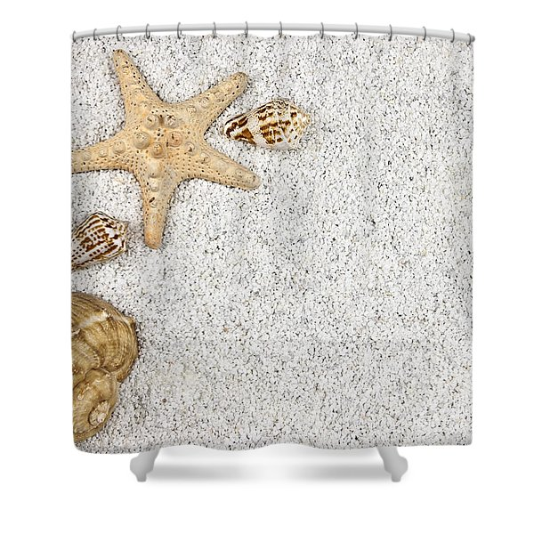 Seastar And Shells Shower Curtain