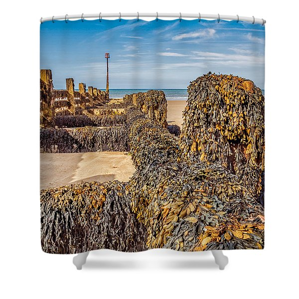 Shower Curtain featuring the photograph Seaweed Covered by Nick Bywater