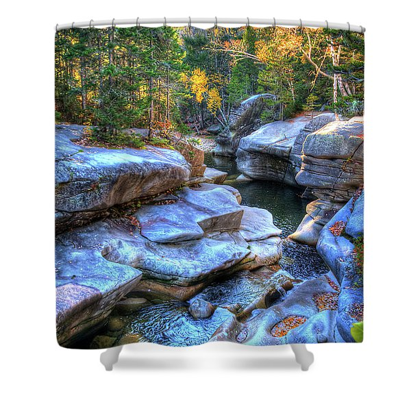 Seclusion Shower Curtain