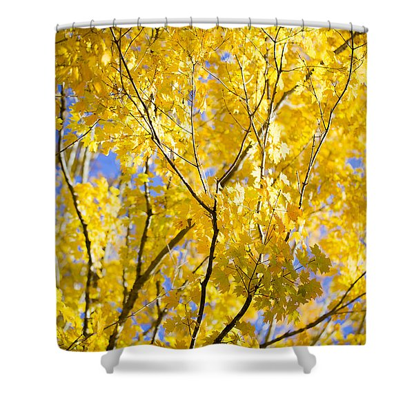 Second Spring Shower Curtain