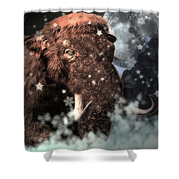 Secrets Of Time Shower Curtain