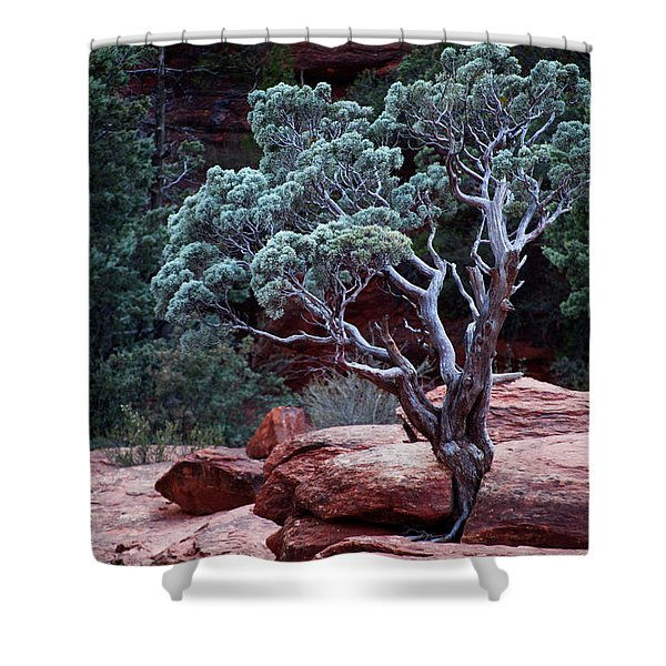 Sedona Tree #3 Shower Curtain