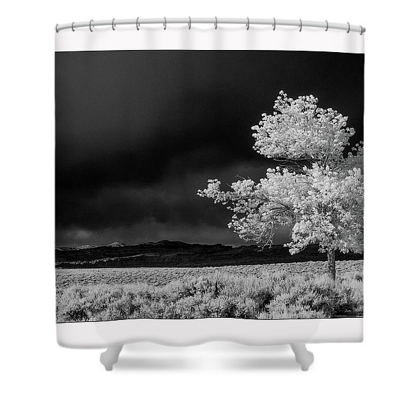 Selective Shower Curtain
