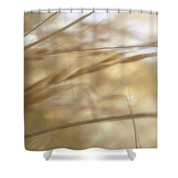 Semolina Shower Curtain