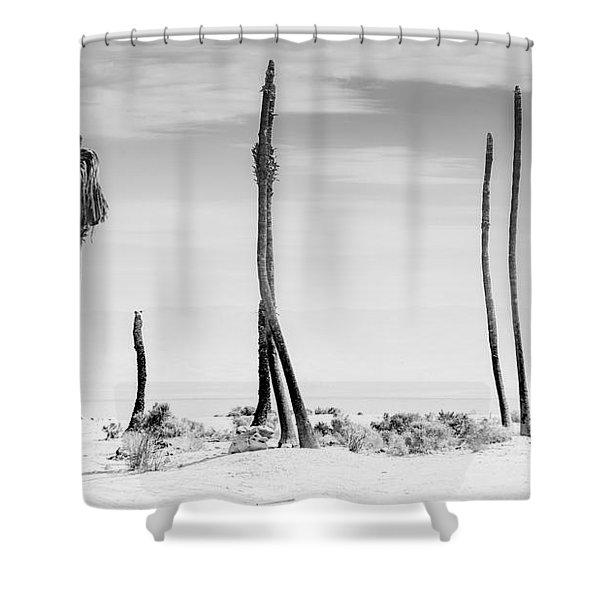 Sentinels Of The Salton Sea Shower Curtain